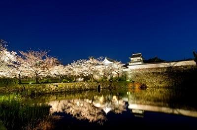 福岡 お花見,福岡城跡