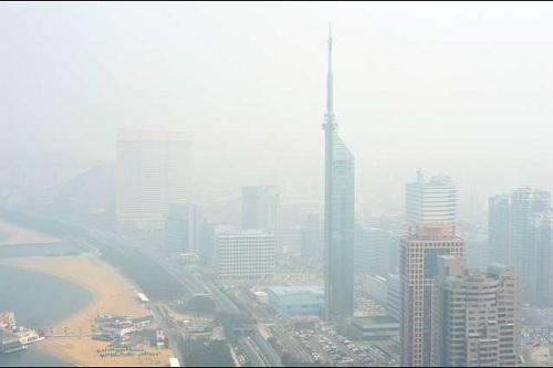 PM2.5福岡市,花粉症