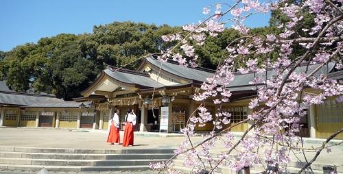 神前式,護国神社